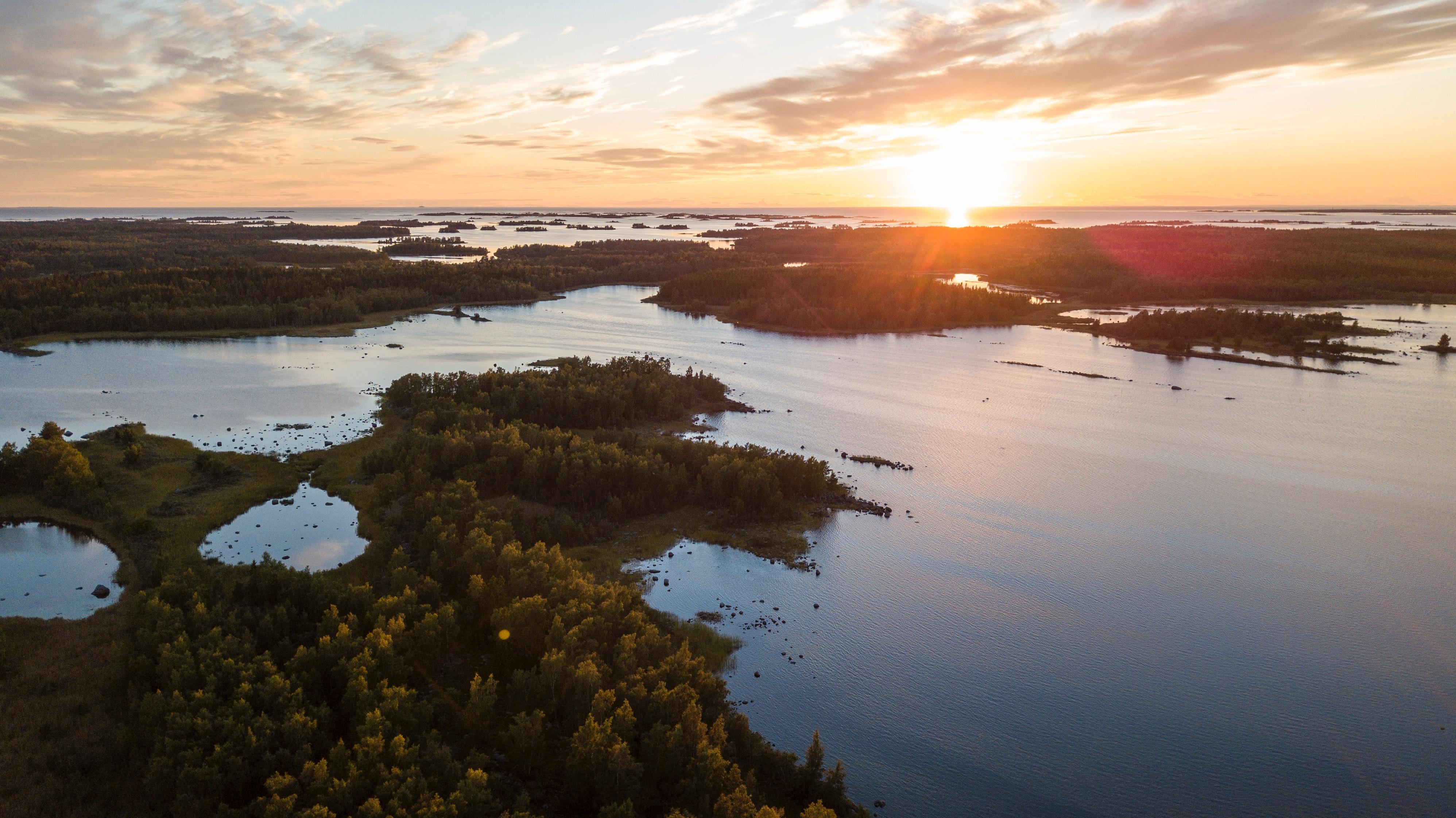 Det svenska i Finland – vadan och varthän